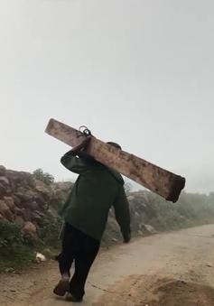 Ngang nhiên phá rừng, vận chuyển gỗ tại rừng đặc dụng Tà Xùa
