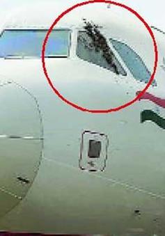 Hành khách của Air India trễ chuyến do sự cố hy hữu