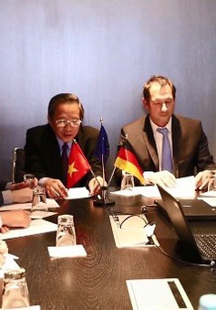 Tỉnh Quảng Bình hợp tác phát triển điện gió với doanh nghiệp Đức