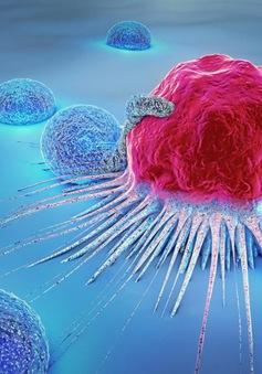 Australia sắp đưa tế bào ung thư ra không gian để tiêu diệt