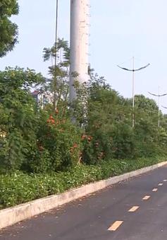 Hà Nội chi 36 tỷ đồng xây 3 cầu vượt sông Tô Lịch cho người đi bộ