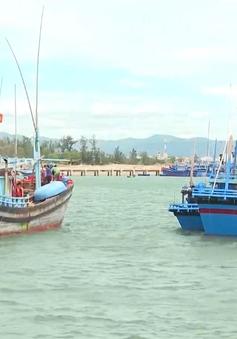 Hoàn thiện quy định về mua, bán và hoán cải tàu thuyền