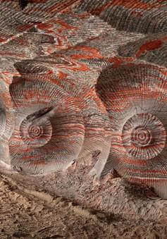 Hình ảnh ấn tượng cho thấy con người đã thay đổi Trái Đất như thế nào?