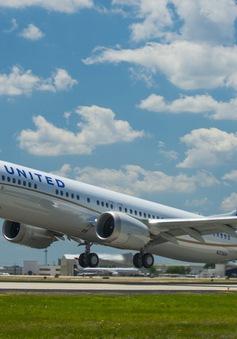 Máy bay hạ cánh khẩn vì hành khách mắc kẹt trong nhà vệ sinh