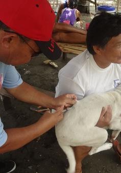 Philippines ứng dụng khoa học công nghệ quản lý tiêm phòng dại