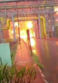 Hỏa hoạn tại nhà máy xử lý khí đốt Ấn Độ