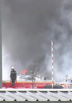 Pháp cấm thu hoạch vụ mùa tại khu vực cháy nhà máy hóa chất