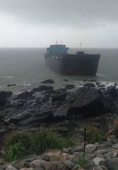 Đài Loan (Trung Quốc) chuẩn bị ứng phó bão Mitag