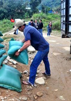Thủ tướng quyết định xuất cấp 1.000 tấn gạo hỗ trợ nhân dân vùng lũ
