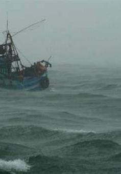 Nỗ lực tìm kiếm ngư dân mất tích trên biển Quảng Bình