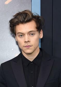 """Harry Styles tiết lộ lí do từ chối vai diễn hoàng tử trong """"Nàng tiên cá"""""""