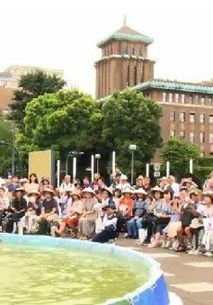 Sôi động Lễ hội Việt Nam tại Yokohama, Nhật Bản
