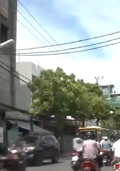 Đà Nẵng: Báo động an toàn hành lang lưới điện