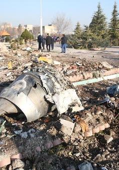 Ukraine đề xuất Anh tham gia điều tra vụ máy bay Ukraine rơi tại Iran