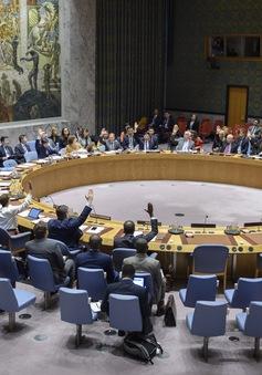 Hội đồng Bảo an thông qua Nghị quyết 2505 gia hạn hoạt động của UNMHA