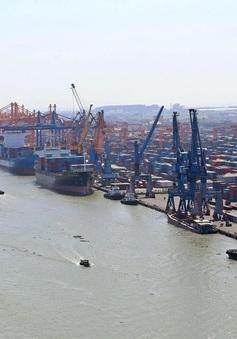 Dự báo lĩnh vực cảng biển, logistics tăng trưởng dương