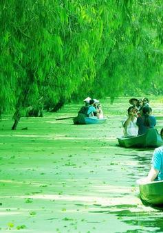 An Giang nhận 2 kỷ lục về rừng tràm Trà Sư