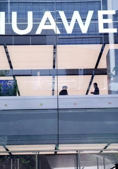 Đức không cấm Huawei tham gia đấu thầu các hợp đồng xây dựng mạng 5G