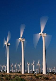 Thủ đô của Australia dùng 100% điện năng từ nguồn năng lượng tái tạo