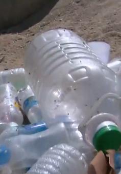 Khó ngăn chặn hành vi xả rác nơi công cộng