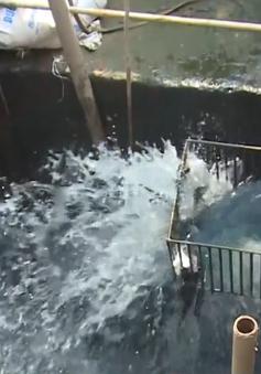 Nhà máy xử lý nước thải KCN xả thải thẳng ra môi trường