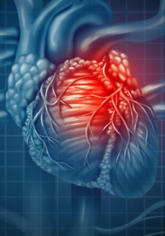 Mô tim 3D - hy vọng mới cho người bệnh tim