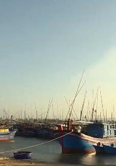 Cuối năm ở làng biển: Mong chờ Tết sum vầy