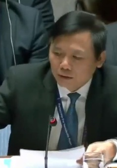 Việt Nam chủ trì phiên họp Hội đồng Bảo an về tình hình Trung Đông