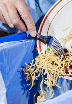 Bạn có đang lãng phí thức ăn khi ăn buffet?