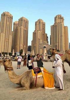 UAE cấp thị thực nhập cảnh nhiều lần cho người nước ngoài