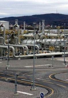 Thổ Nhĩ Kỳ khai trương đường ống dẫn khí Turkstream