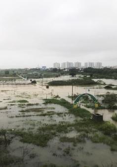 Chủ động ứng phó mưa lũ phức tạp