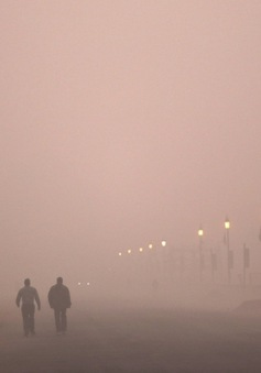 Ấn Độ nỗ lực kiểm soát chất lượng không khí trong dịch COVID-19