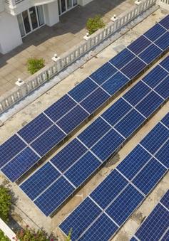 Giá trị lợi ích, xanh hoá chiến lược kinh doanh từ điện mặt trời áp mái