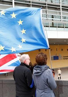 Anh - EU nối lại đàm phán thương mại
