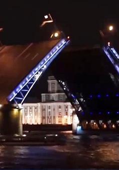 Khám phá Saint Petersburg về đêm với những cây cầu mở