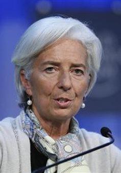ECB chuẩn bị cho khả năng phát hành đồng Euro kỹ thuật số