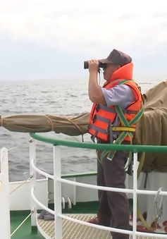 Huy động thêm tàu tìm kiếm ngư dân mất tích trên biển