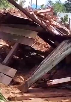 Tìm thấy 8 thi thể nạn nhân trong vụ sạt lở đất tại Trà Vân