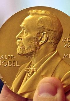 Giải Nobel và những câu chuyện truyền cảm hứng