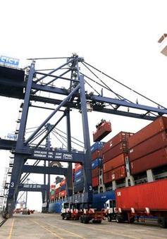 Khan hiếm container rỗng, nhiều doanh nghiệp xuất khẩu gặp khó