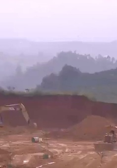Tình trạng thu gom đất lâm nghiệp, san ủi mở đường tại Lâm Đồng