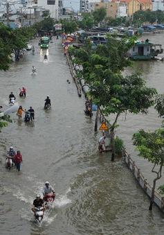 Triều cường kỷ lục ở TP.HCM, nước ngập đến yên xe máy, người dân túc trực tát nước