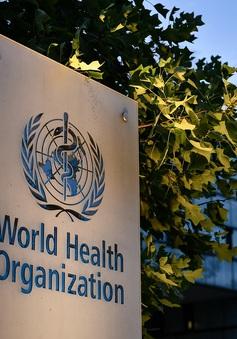 WHO cảnh báo tác động của dịch COVID-19 đến sức khỏe tâm thần về lâu dài