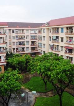Đà Nẵng thu hồi 188 căn hộ nhà ở xã hội sử dụng sai mục đích