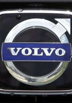 Volvo và BMW thu hồi hàng nghìn xe nhập khẩu bị lỗi tại Trung Quốc