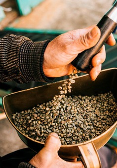 10 tháng, xuất khẩu cà phê Việt Nam giảm 1,3%