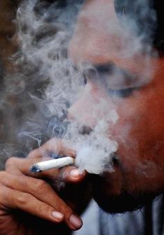 Indonesia tăng thuế tiêu thụ đặc biệt với thuốc lá
