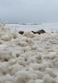 Hiện tượng bọt nâu kỳ lạ phủ kín bờ biển ở Australia