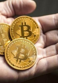 """Bitcoin tăng giá điên cuồng: Sau """"đỉnh cao"""" có còn là """"vực sâu""""?"""